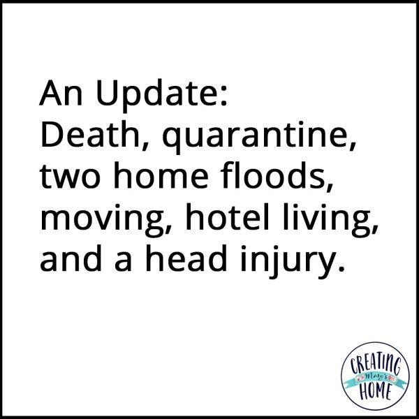 Death, quarantine, two home floods, moving, hotel living, and a head injury.