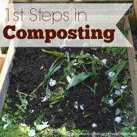 1st Steps in Composting