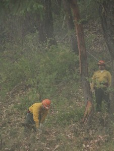 stouts fire crew on cow creek road