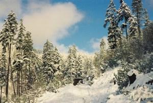 Snow on my land