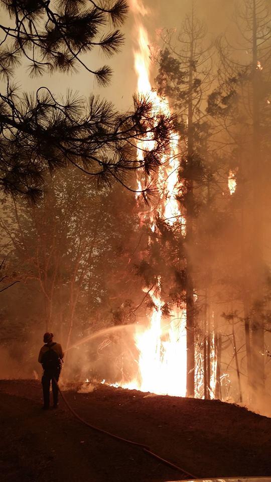 stouts fires