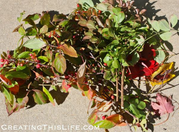 fall tree clippings