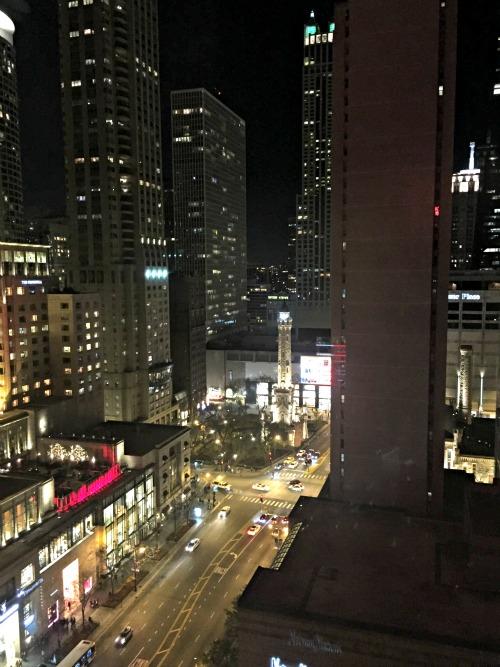 michigan avenue hotel view
