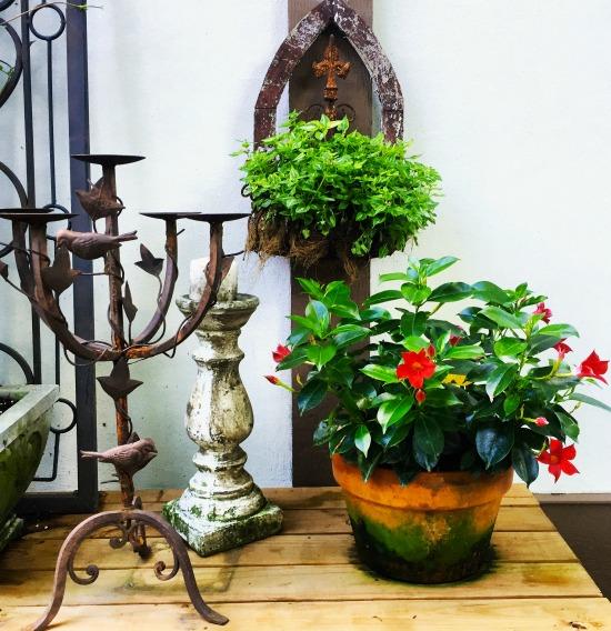 tudor garden 4
