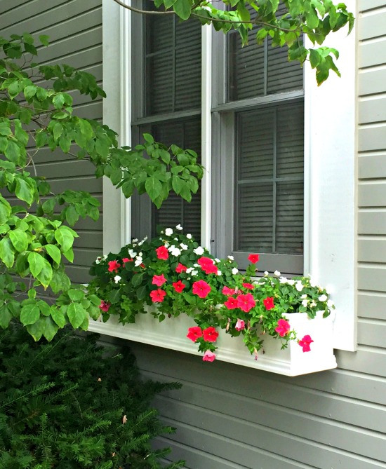 window box-2
