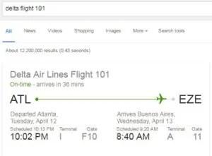 google-search-flight-info