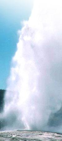 A geyser nicknamed old faithful