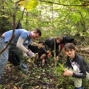 Pulling Non-Native Invasive species