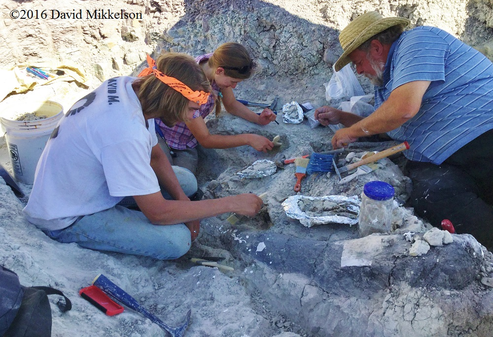 Working on the Colorado dig site Photo credit: David Mikkelson, 2016