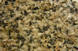 Small-grained granite