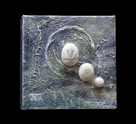 Oursins de mer