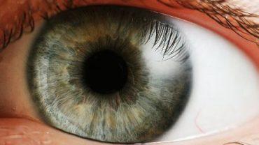 design-in-the-human-eye-photo
