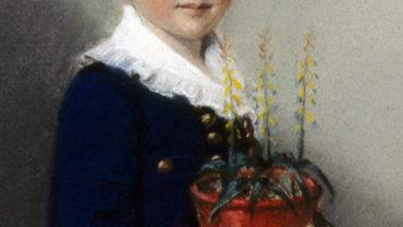 191-18-darwins-childhood-influencesrz