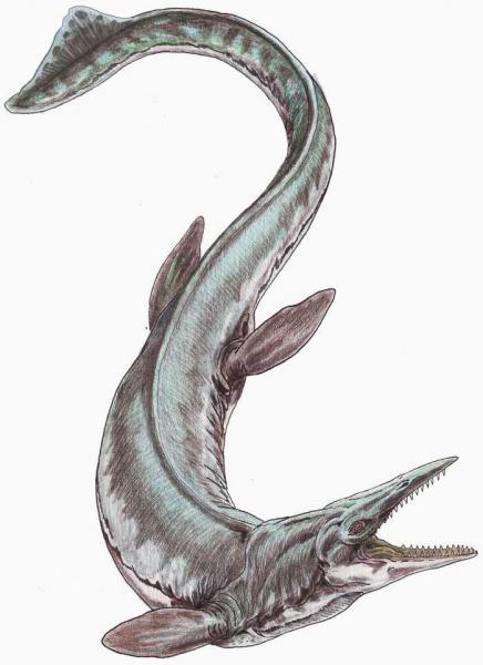 Could Leviathan Be a Dinosaur? – Creation Moments