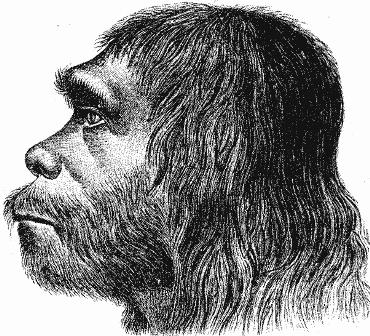 Who was Neandertal