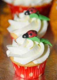 Mini Cupcake coccinelle