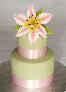 Gâteau de fête 2