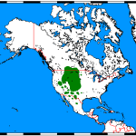 CS4K-Antilocapra_americana_range_map