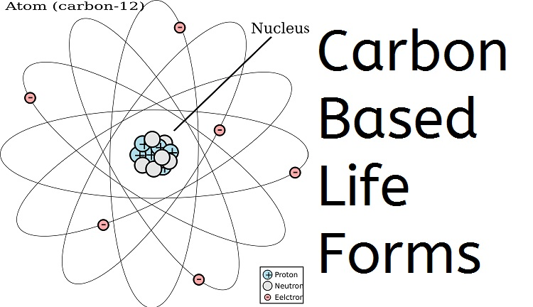 Carbon Based Life Forms