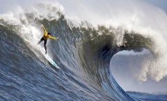 Maverick Surf Competition wave and man, photo credit: Shalom Jacobovitz