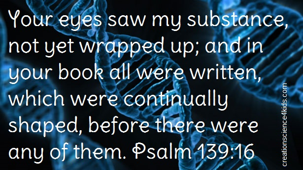 Your eyes saw my substance, not yet wrapped up; and in your book all were written, which were continually shaped, before there were any of them. Psalm 139:16