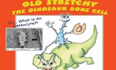 Old Stretchy-featured image