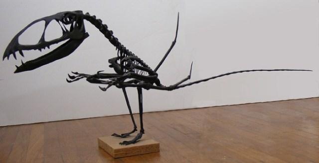 Dimorphodon Skeleton looking puzzled: WikiCommons