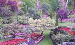 Butchart Gardens Photo Credit: Nogwater