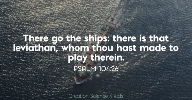 There go the ships: there is that leviathan, whom thou hast made to play therein. Psalm 104:26