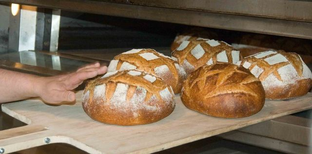 Checking fresh bread loaves, Photo Credit: FotoDawg