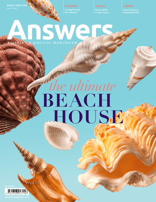 Answers Magazine: the ultimate Beach House issue