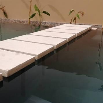 Les pas japonais semblent flotter sur l'eau