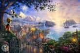 My Disney Dreams Collection