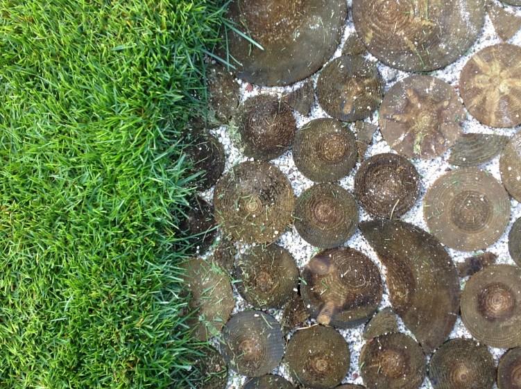 particolare pavimentazione tronchetti