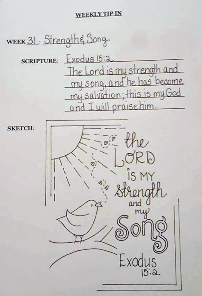 31 song bird sketch