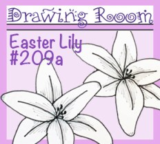 Drawing 209a LILY