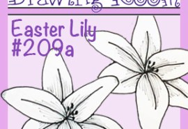 Square Drawing 209a LILY