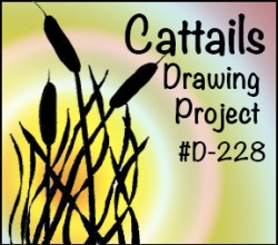 Drawing Cattails SQUARE