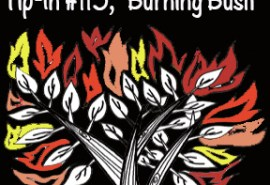 Tip-In #115 Burning Bush Square