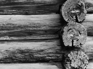 Stillness in Time