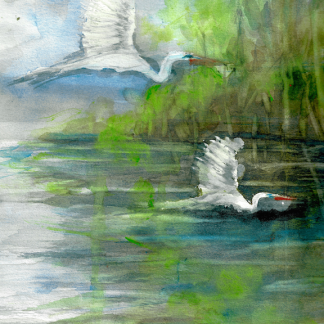 Birds In Paradise 2R