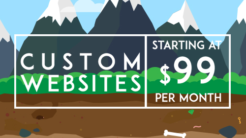 Custome Websites Starting at $99 per month