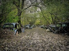 Car-Graveyards-Photography-12
