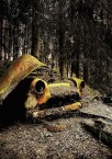 Car-Graveyards-Photography-3