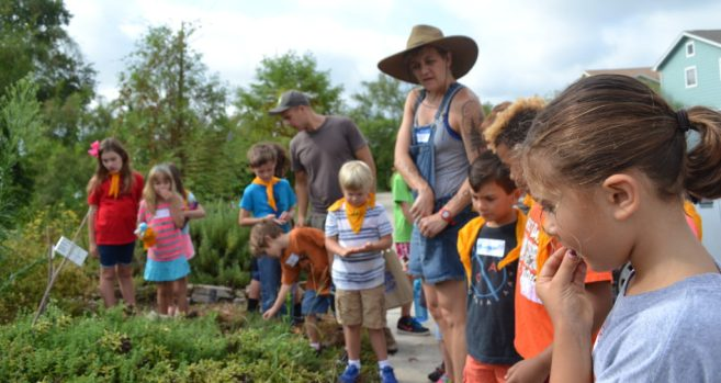 Urban Gardener with Sustainable Food Center @ Center for Creative Action | Austin | Texas | United States