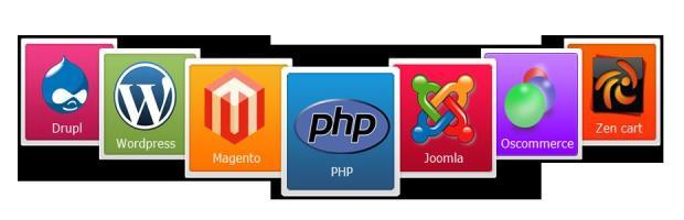 Choosing the suitable web development tool – a CMS!