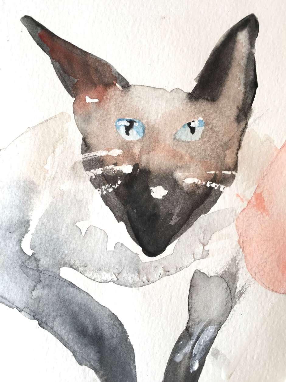 Creative Club Katze