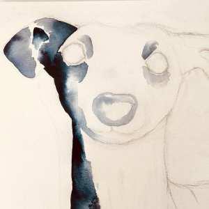 Du siehst wie Dodo mit indigoblauer Aquarellfarbe das Gesicht des Whippet malt