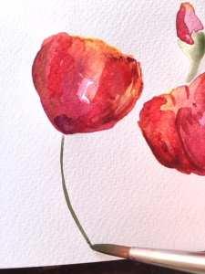 Man sieht, wie Dodo Kresse die Blume in Aquarell malt