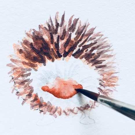 Schnauze mit brauner Aquarellfarbe anlegen